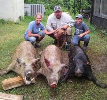 Hogs are a nuisance, but offer good sport and tasty table fare to hunters like these from Big Country Outdoors.