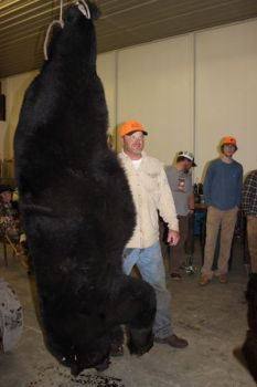 Ken Spell took this 720-pound black bear in Pender County. Such heavyweight bears are unusual in the state's southern counties.