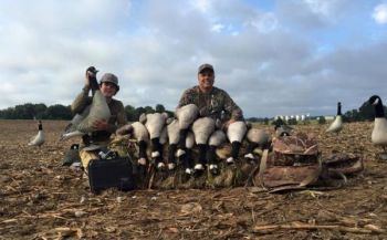 Don't worry, Team Wrecking Crew didn't kill them all, but there's no such thing as Canadian geese.