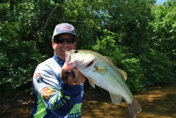 Bass pro Davy Hite searches for spring bass with Senkos, crankbaits or spinnerbaits, but once he's located a concentration of nice fish, he'll slow down and fish an area thoroughly.