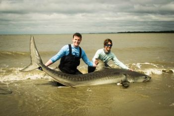 Stan Warren And Spencer Fort Of Requiem Fishing Pose With A Tiger Shark They Caught