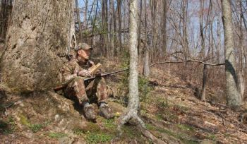 Learning more about turkeys and their behavior will give you a leg up on filling this year's tags.