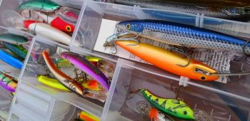 Baits designed to catch bass are made in a rainbow of colors, but you only need six or eight different color combinations you have confidence in to meet most fishing needs.