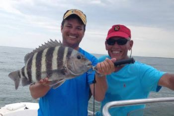 April can be a fantastic month to target sheepshead before they leave the nearshore reefs and return to Murrells Inlet.