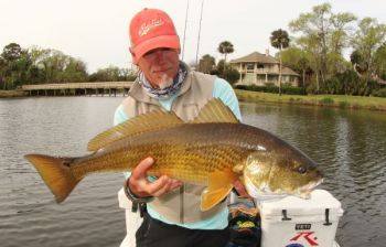 Hilton Head Island's lagoon is home to some big and colorful redfish like this one Capt. Trent Malphrus of Palmetto Lagoon Charters is posing with.