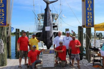 The Marlin Gull won the Fabulous Fisherman Level award after William McSpadden brought this 564.8-pound blue marlin into the boat, which is captained by Kenny Midget.