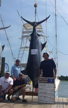 The Ashley Lauren brought a 621.4-pound blue marlin to the scales on Tuesday, day 2 of the 2016 Big Rock Blue Marlin Tournament.