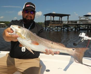 Guide Stephen Fields takes his time this month fishing Stono River docks, which hold redfish because of the shade and structure.