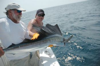 Sailfish push into nearshore waters off the east side of Cape Fear every July.