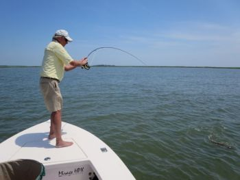 The author battles a redfish he hooked on a fly.
