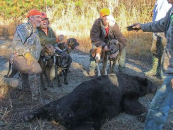 Zeb Nichols killed this 500-pound bear in Beaufort County with a handgun at point-blank range.
