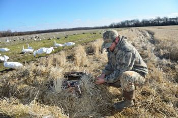 Fully camouflaged layout blinds are a great option for hunters looking to hide from snow geese out in the open among decoys.