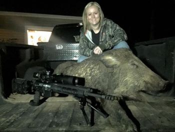 Kayla Casey's husband spent a day custom-building this AR10 rifle, and she pulled the trigger on this big boar.