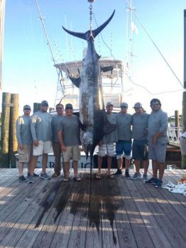 The Carterican's 578.6-pound blue marlin was reeled in by Ian Hoffman on day one of the 2017 N.C. Governor's Cup.