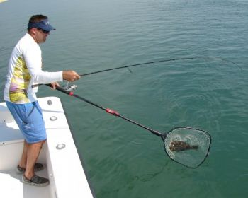 Cooler waters 45 to 50 feet deep around the State Port Wall in Morehead City, N.C., hold plenty of flounder at the peak of the summer's heat.