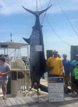 Run-Off led the 2017 Big Rock Blue Marlin Tournament from start to finish, and was rewarded with a record payout.