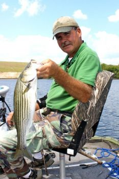 Striped bass, as well as largemouth bass, will school in the upper part of Roanoke Rapids Lake on cloudy days, giving guide Tim Biesecker  plenty of topwater action.