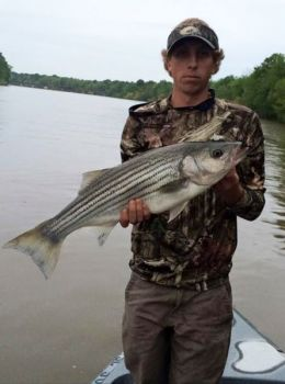 The tailrace area below Wateree Dam can be a great fall spot to catch striped bass that move up into the Wateree River from Lake Marion.