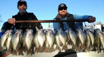 Crappie will gang up around brush piles in many of Kerr Lake's feeder creeks when the water cools in December.
