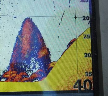 Marking fish arcs along pronounced bottom structure like a ledge or hump shows why trusting your depth finder is a big key in catching big winter blue catfish.
