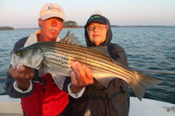 Stripers on Clarks Hill Lake will be congregated in the Georgia and South Carolina Little Rivers this month in search of baitfish.