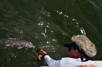 Crabs are lethal weapons for anglers targeting Grand Strand reds this month.