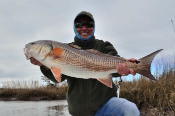 The marshes around Georgetown, S.C., are full of nice redfish in big schools through the winter.