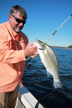 Red-clay fever will infect striper, hybrid fishermen on South Carolina's Lake Hartwell this month.