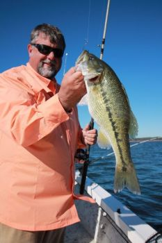 Largemouth bass and spotted bass may visit spreads of baits intended for stripers or hybrids in March.