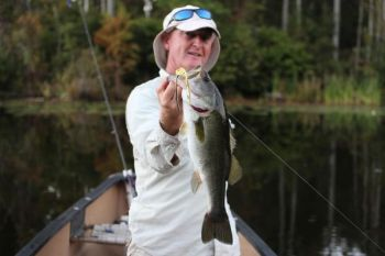 Mike McSwain shows off a bass caught on a topwater, hollow-body frog lure. These lures are popular choices in the spring for largemouth bass, especially around weeds, lily pads, and other surface debris.