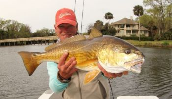 Slip-bobber rigs baited with live and/or cut bait have been the ticket for many nice redfish.