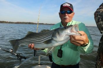 Capt. David Hilton is happy to see the new Santee striped bass regulations, which went into effect on May 3, 2018.