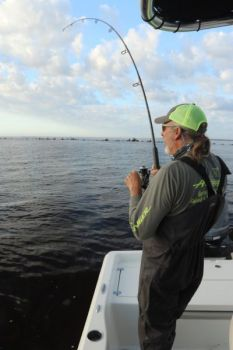 When fighting a fish, let your rod and your reel's drag do the work.