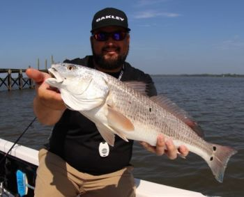 The new bag limit on redfish in South Carolina is effective July 1, 2018.