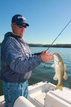 Guide Jerry Kotal catches plenty of Lake Russell bass on small worms fished on drop-shot rigs.