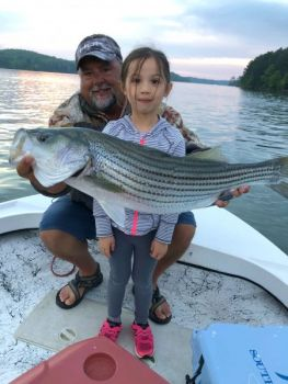 During the summer months, down-rodding live bait for striped bass is the go-to tactic for fishing guide Chip Hamilton and anglers of all ages.