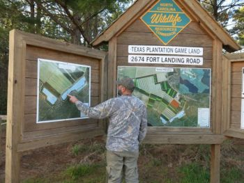 Public-hunting opportunities abound in both Carolinas for deer hunters who don't have access to private land through a lease or a hunt club.