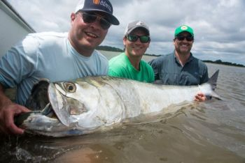 Tarpon migrate into South Carolina waters in the summer, and Georgetown is a hot spot.