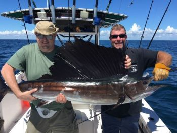Warmer water temperatures push sailfish north from the tropics and into nearshore waters off the Carolinas during the summer.