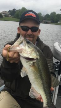 Mike Cork of Benton holds a good-sized bass that bit on a Tri-Alive 6.5 Nightcrawler made by Minden-based Mister Twister.