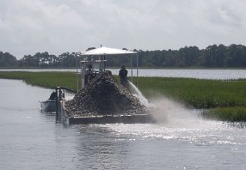 Oyster shells are recycled to help establish and maintain oyster beds along the coast.
