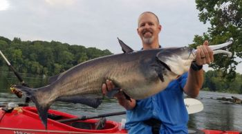 Mike Curtis of Rockingham, N.C., said it's so easy to catch big catfish in the Pee Dee River that anyone can do it.