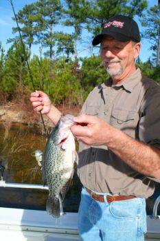 Guide William Sasser said Clarks Hill spits out a lot of big crappie once October arrives and fish start to feed up for the winter.