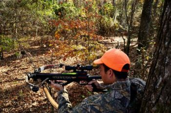 Some cover and a comfortable spot to sit can turn into an excellent place for a ground blind for bow or gun.