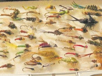 Trout will hit a variety of nymph patterns if the weighted flies are kept near the bottom of a stream.