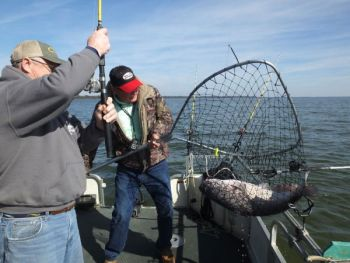 Drift-fishing is an established way for Santee Cooper fishermen to land striped bass and blue catfish.