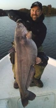 Guide Chris Nichols said High Rock is developing into a top-drawer lake for blue catfish.