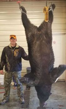 Matthew Griffin was hunting with his dad in Craven County, N.C. on Nov. 17, 2018 when he killed this big black bear.