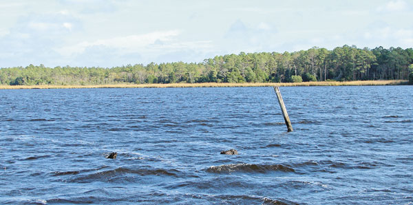 Saltwater series hot fishing spots of the neuse river for Cherry creek reservoir fishing