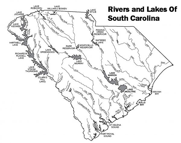 Get The Jump On Wood Ducks Across South Carolina